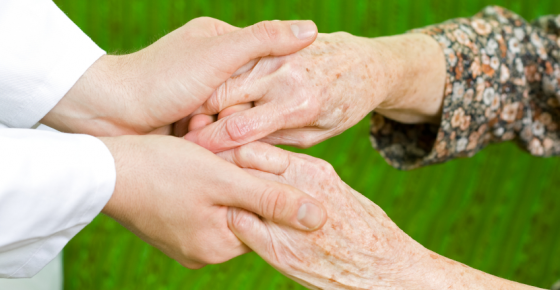 Offering: housekeeping, shopping, nursing support and companionship for seniors.